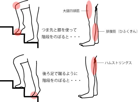 自転車階段トレーニング法