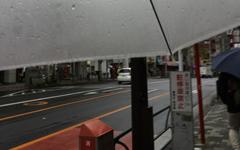 クロスバイクやロードバイクの雨対策