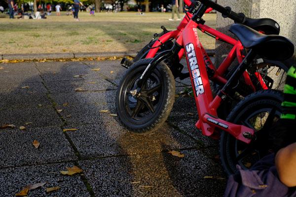 自転車に有利なのは三輪車かストライダーか